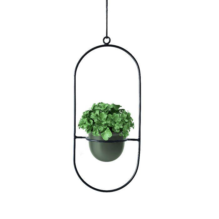 עציץ תלוי מהתקרה - מעמד לעציצים תלוי מהתקרה
