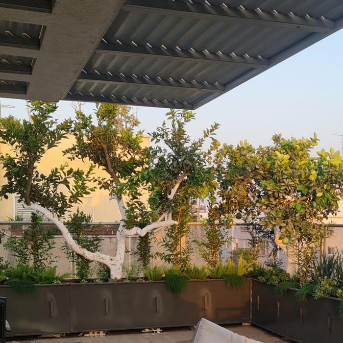 עדניות למרפסת לצמחייה - עדניות מתכת בהתאמה אישית